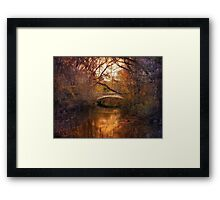 Autumn's Finale 3 Framed Print