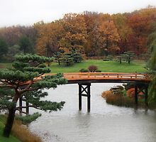 Garden Bridge by ariesphoto