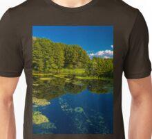 an incredible Ukraine landscape Unisex T-Shirt