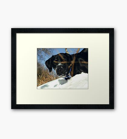 Maggie the Snowplow Framed Print