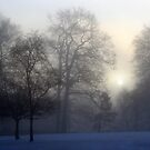 Through the mist by Debbie Ashe