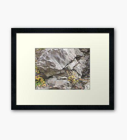 Smoky Mountain Abstract Framed Print