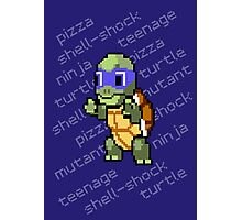 Squirtle Turtle - Leo Photographic Print