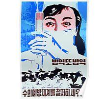 Let us establish the preventive veterinarian system north Korean propaganda poster Poster