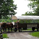 Historic Nauvoo Wagon Ride ~ Illinois, USA by Jan  Tribe