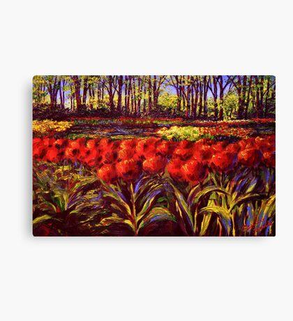 The Red Tulips in Keukenhof Canvas Print