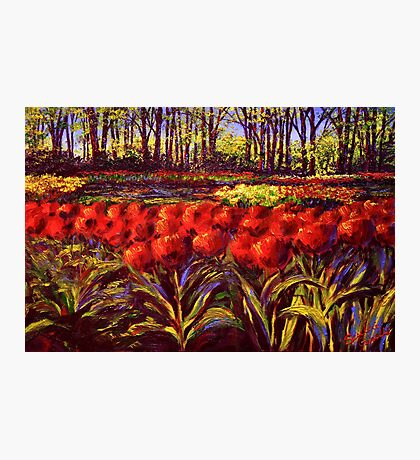 The Red Tulips in Keukenhof Photographic Print