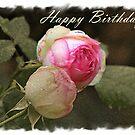 Happy Birthday by julie anne  grattan
