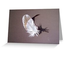 Feather & shadow #1 Greeting Card
