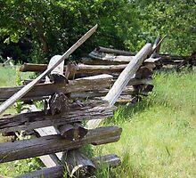 Split-rail Fence by ECH52