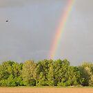 End of the rainbow. by SherryLynn58