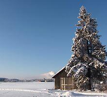 an amazing Finland landscape by beautifulscenes