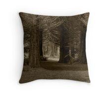 Walking track through trees. Throw Pillow