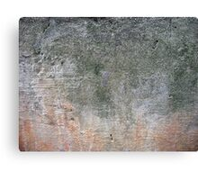 grunge background with space for text or image Canvas Print