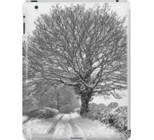 Winter Farm Lane Tree iPad Case/Skin
