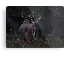 The Confrontation - White-tailed Deer Metal Print