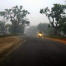 Road to Village by Vivek Bakshi