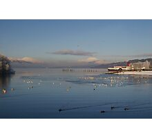 Busy Bay Photographic Print