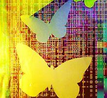 Butterflies by Vitta