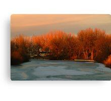 A Winters Evening Golden Light Canvas Print
