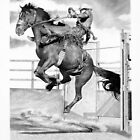 Saddle Bronc #2 by J.D. Bowman