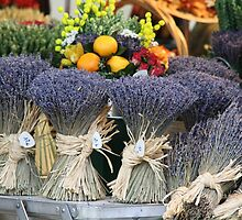 Lavender in Cannes, France by April-in-Texas