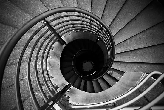 Curves and Lines by Mark Lee