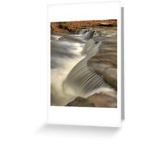 Falls on Bear Branch Greeting Card