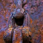 anchor chain on the hulk of the Portlairge, Saltmills, County Wexford by Andrew Jones