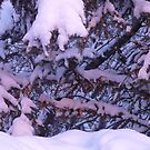 Purple/Pink Snow by MaeBelle