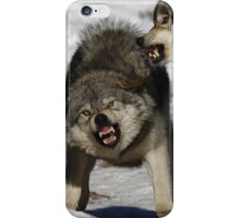 Back off! - Timber Wolf iPhone Case/Skin