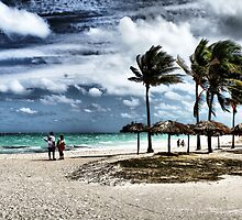 Cayo Co Co by duckman74