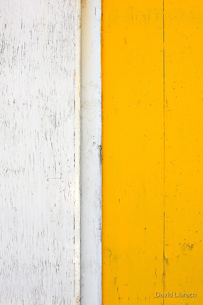 White and Yellow by David Librach - DL Photography -