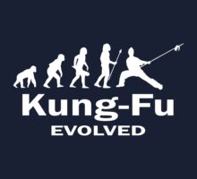 Kung- Fu Evolved by FightZone