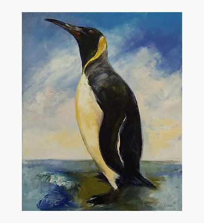 King Penguin Photographic Print