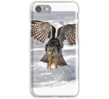 Snow Blast - Northern Hawk owl iPhone Case/Skin