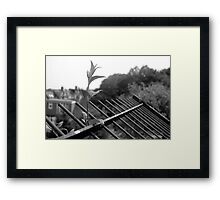 NATURE WILL PREVAIL IV Framed Print