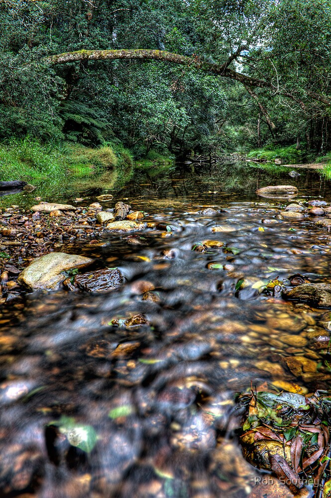 Jubilee Creek by Rob  Southey