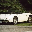 Austin Healey 3000 by Mike Oxley