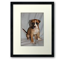 I May Be SHY, But I Give Great Kisses 09 Framed Print