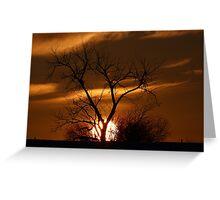 Fireball Sunset tree Greeting Card