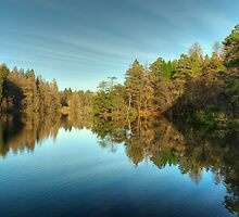 Tarn Hows Reflections by VoluntaryRanger