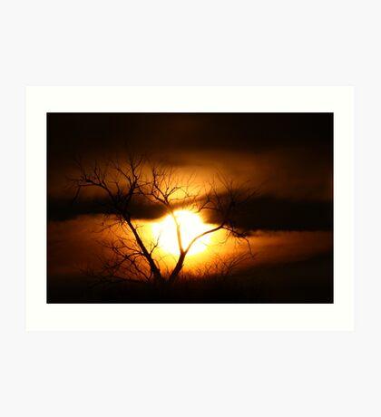 Gloom - Tree Art Print