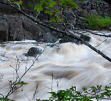 Fast flowing river - Launceston Cataract Gorge by Jenni Greene