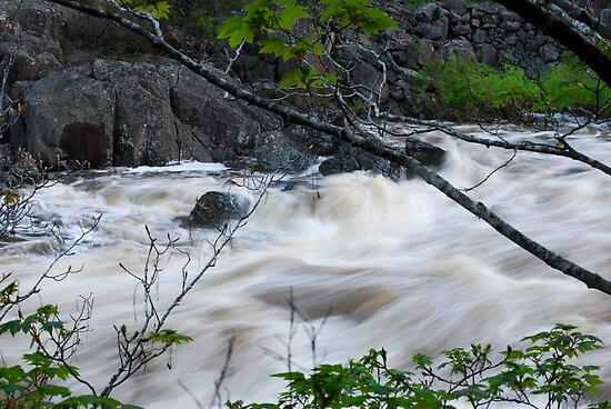 Fast flowing river - Launceston Cataract Gorge by Jenni Greene