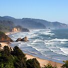 Pacific Coast - Oregon, USA by searchlight