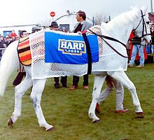 Desert Orchid at Downpatrick 1992 by oulgundog