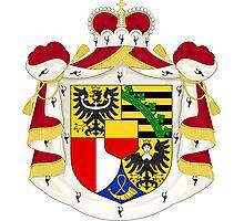 Coat of Arms of Liechtenstein Photographic Print