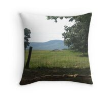 View of the farm Throw Pillow