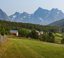 a large Norway